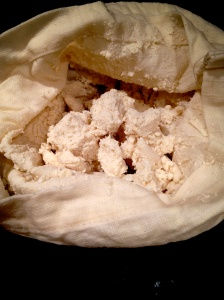 Okara: What's left in Nut-Milk Bag