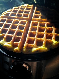 Savory Waffles on iron