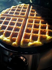 Savory Waffles on iron